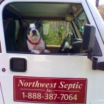Porschia, a Northwest Septic Team Member